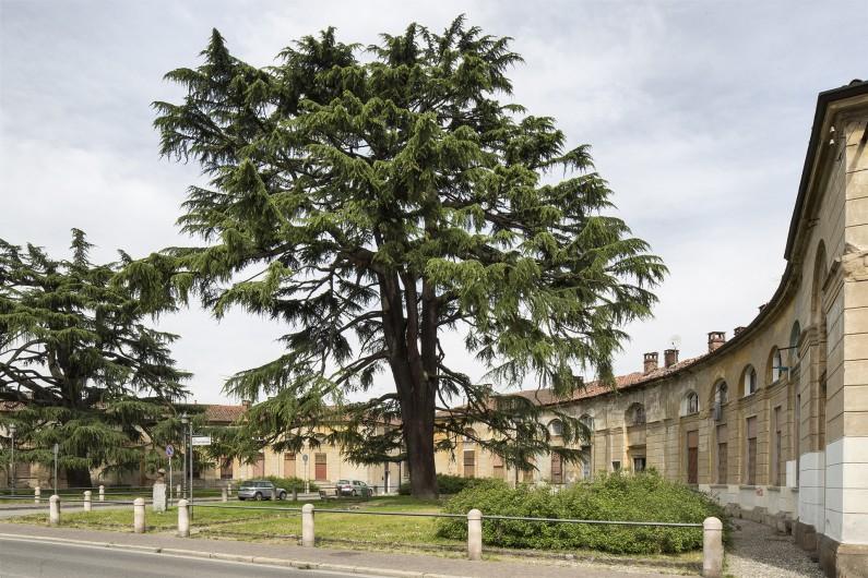 Particolare dell'Esedra esterna alla Corte d'ingresso alla villa (Fototeca ISAL-BAMS Photo Rodella)