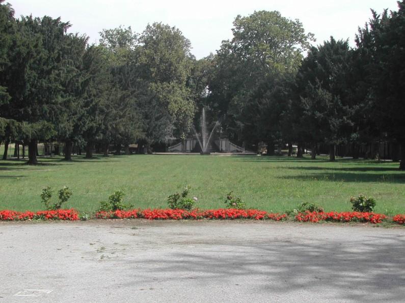 56CE Tiglio (2) fontana con sfondo di tigli