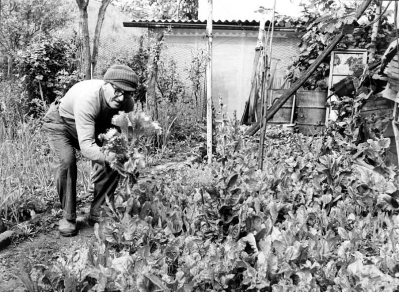 6S 1948-1963 Una fabbrica e l'abitudine ai suoi veleni (2) 1-12