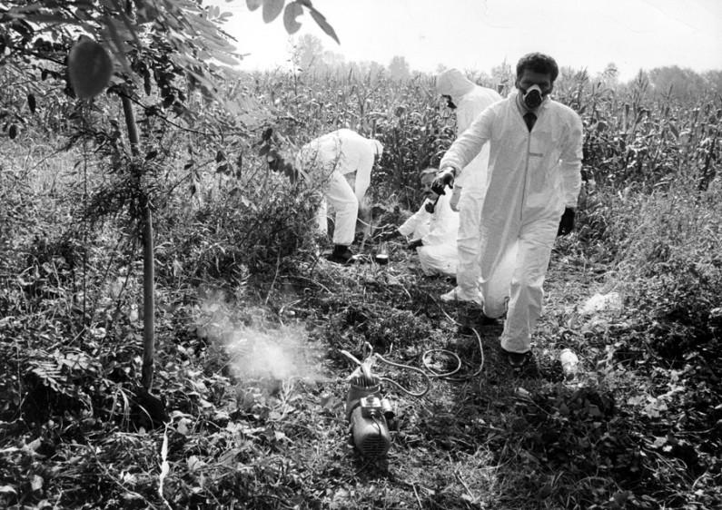 6bisS 1965-1973 Nuove accuse di inquinamento (1) 1-23